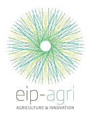 logo_en eip