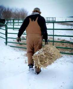 farmer-winter-working