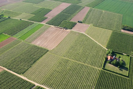 Hoeve in landbouwgebied met akkers; Farm in agricultural area wi