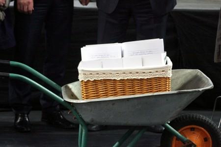 Peticija krepšy