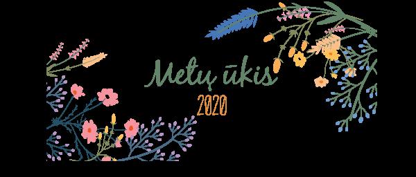 MU2020 renginio_uzsklanda